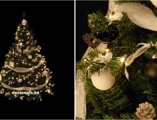 No L Au Pays Des Nounours Livraison Sapins De Noel