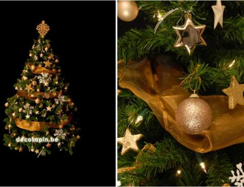 Noël dans les étoiles